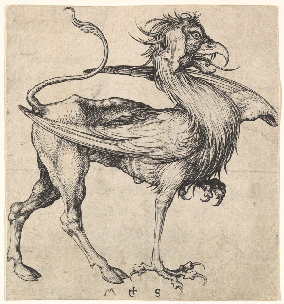 Griffin Drawing, Martin Schongauer (German, Colmar ca. 1435/50–1491 Breisach)